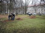 Pagalba VšĮ Vilniaus miesto klinikinei ligoninei tvarkant teritoriją