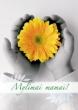 Šventiškai paminėta Motinos diena