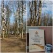 """Šiaulių regiono skyriaus pareigūnai ir priežiūroje esantys asmenys dalyvavo Žemės dienos akcijoje """"Inkilų alėja"""""""
